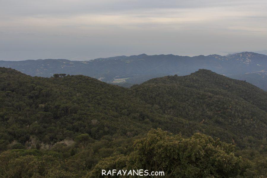 Ruta: Puig Cadiretes ( 519 m) (Els 100 Cims)