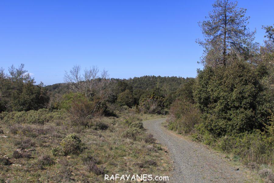 Ruta: Tossal de la Baltasana (1.201 m.) y la Mola d'Estat (1.136 m.) (Els 100 Cims)