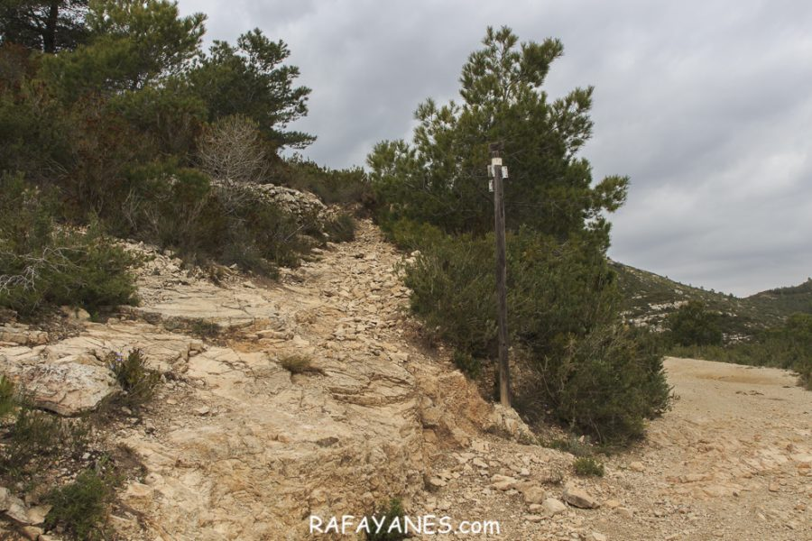 Ruta: Puigcabrer ( 524 m.) (Els 100 Cims)