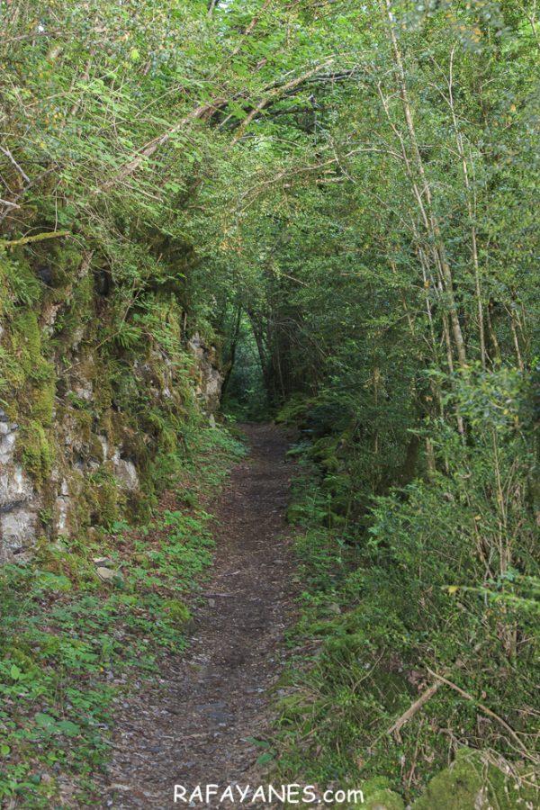 Ruta: Basa de la Mora o Ibon de Plan