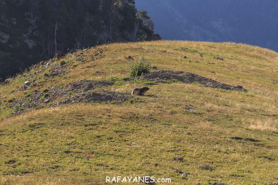 Ruta: La Ruta: La Carabassa (2.740 m.) (Els 100 Cims) (2.740 m.) (Els 100 Cims)
