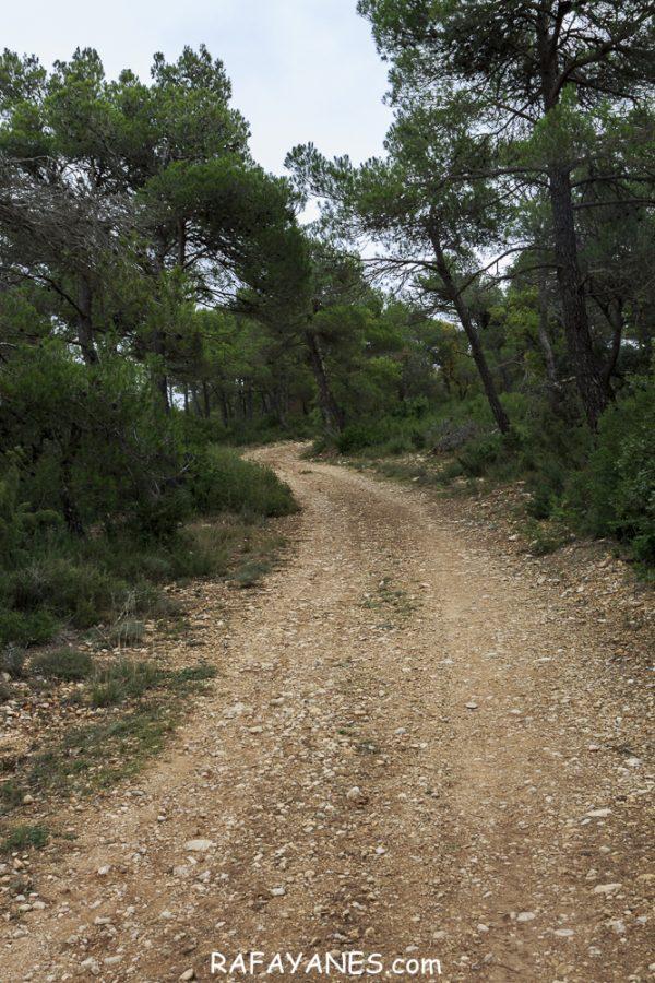 Ruta: Sant Miquel de Montclar (948 m.) (Els 100 Cims)