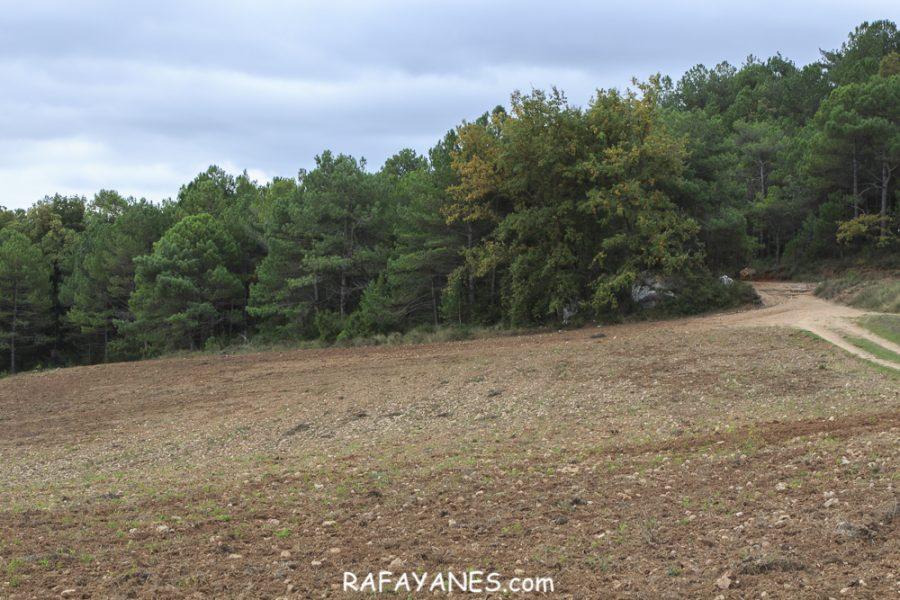 Ruta: Montagut d'Ancosa (963 m.) (Els 100 cims)