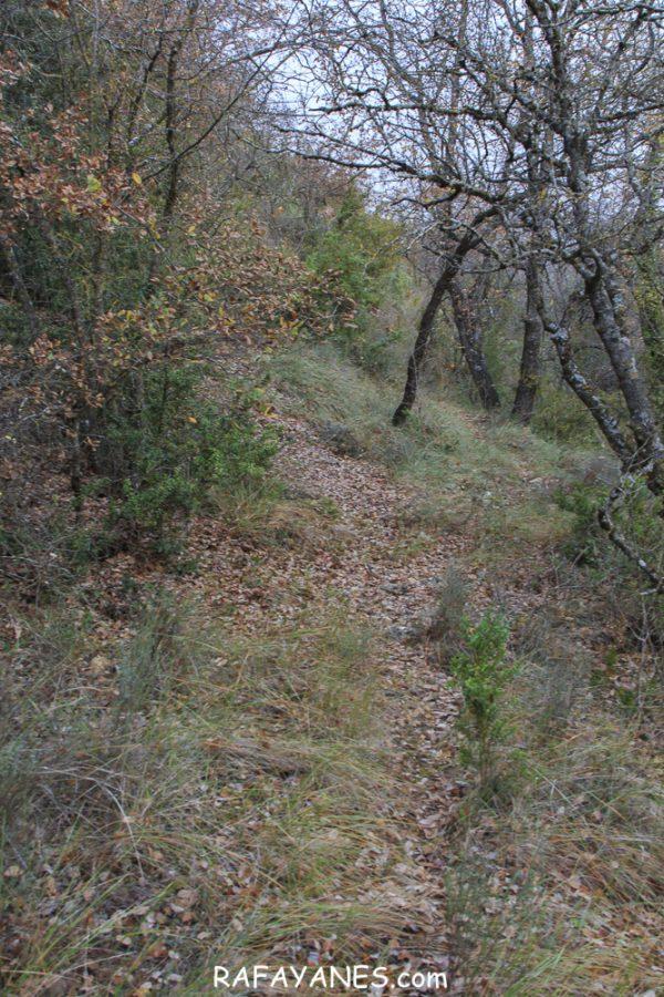 Ruta: Los Picons (951 m.) (Els 100 Cims)