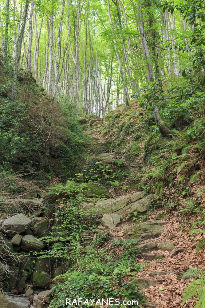 Ruta: Puigsallança ( 1.027 m.) (Els 100 Cims)