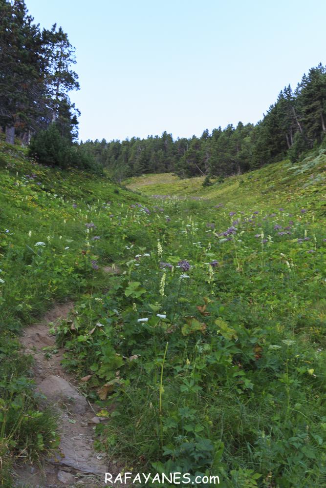 Ruta: Cambra d'Ase  (2.750 m.) (Els 100 Cims)