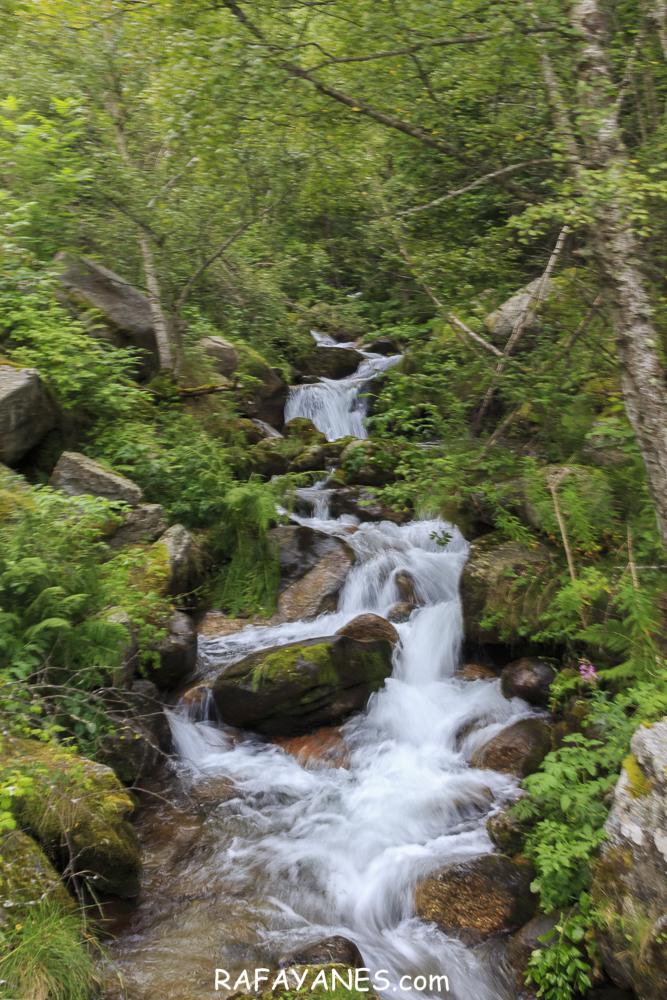 Ruta: Puig de Gallinàs  (2.624 m.) (Els 100 Cims)