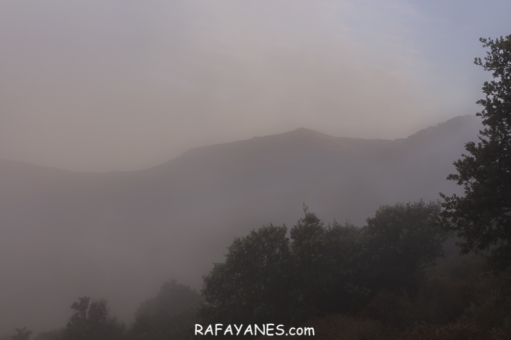Ruta: Pic de Sallafort  ( 994 m.) y Torre de Madeloc ( 656 m.) (Els 100 Cims)