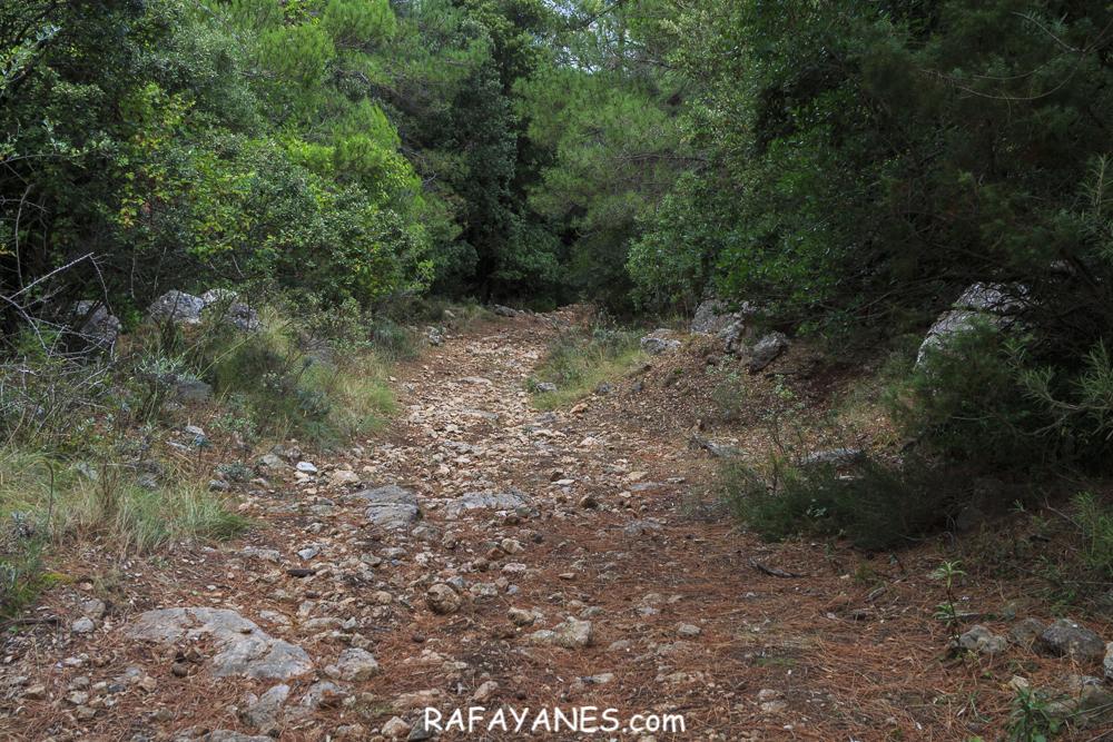 Ruta: L'Espina (1.181 m.) (Els 100Cims)