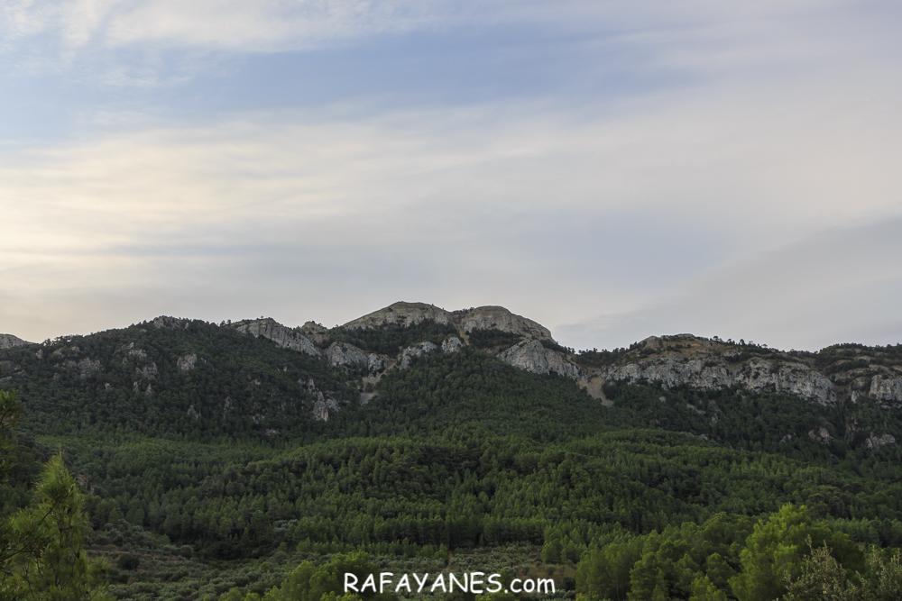 Ruta:  La Coscollosa ( 879 m.) (Els 100Cims)