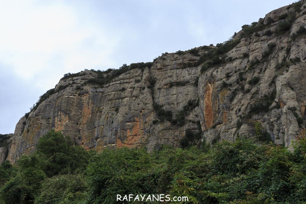 Ruta: Roca Roja (1.239 m.) (Els 100 Cims)