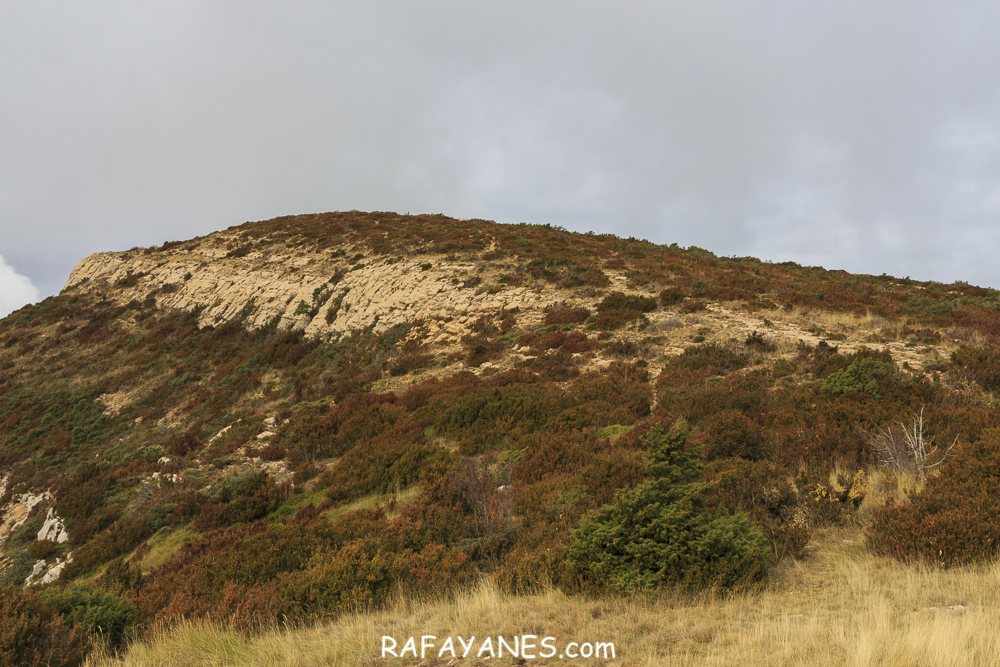 Ruta: Tossal de Mirapallars-i-Urgell (1.672 m.) (Els 100 Cims)