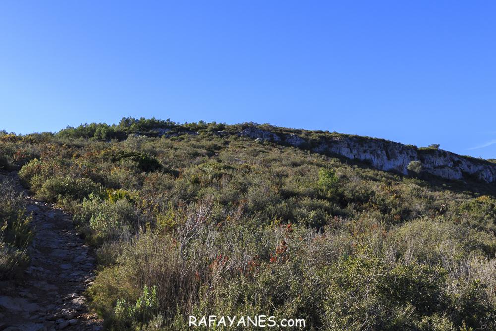 Ruta: Penya del Papiol (381 m.) (Els 100 Cims)