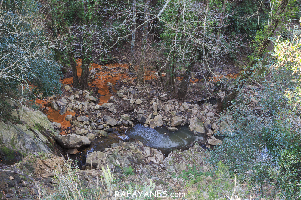 Ruta: Capilla de l'Erola - Pantano de Brinxa - Encinas de Can Portell