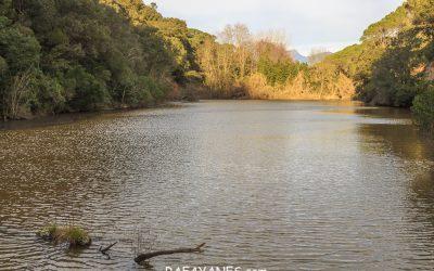 Ruta: Capilla de l'Erola – Pantano de Brinxa – Encinas de Can Portell (El Montgre y el Corredor)