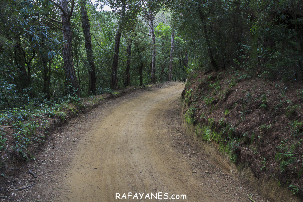 https://rafayanes.com/blog/ruta-vallgorguina-moais-dolmen-pedra-gentil-sta-eulalia-de-tapioles-el-montnegre-y-el-corredor/