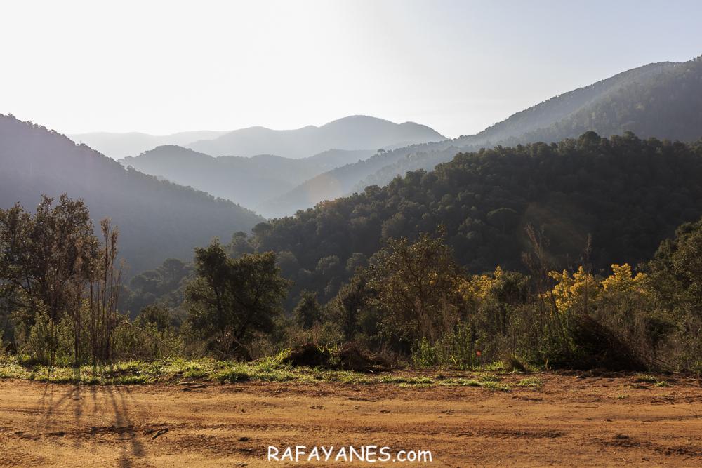 Ruta: Sant Celoni – Roca del Drac – Sant Llorenç de Vilardell (El Montnegre y El Corredor)