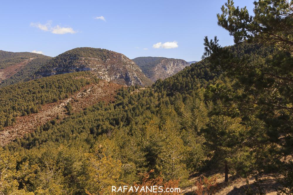 Ruta: Roc de Galliner (1.630 m.) (Els 100 Cims)