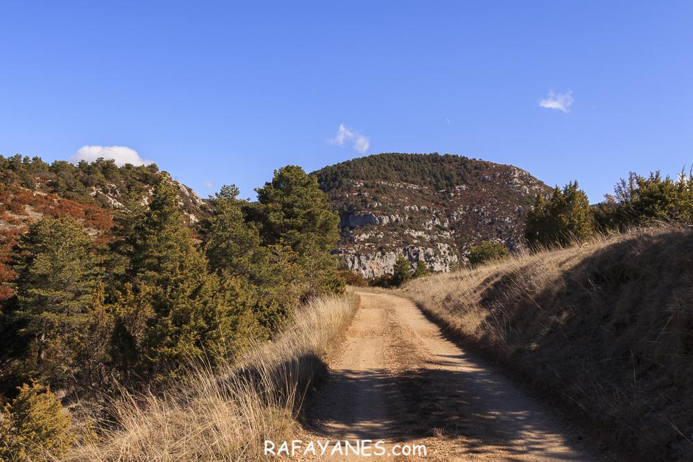Ruta: Roc de Galliner (1.630 m.) (Els 100 Cims)v