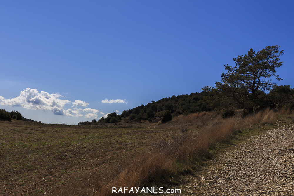 Ruta: Cogulló de Turp (1.621 m.) (Els 100 Cims)