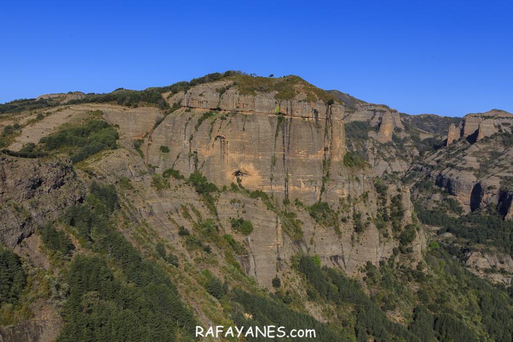 Ruta: Pui de Lleràs (1.692 m.) (Els 100 Cims)