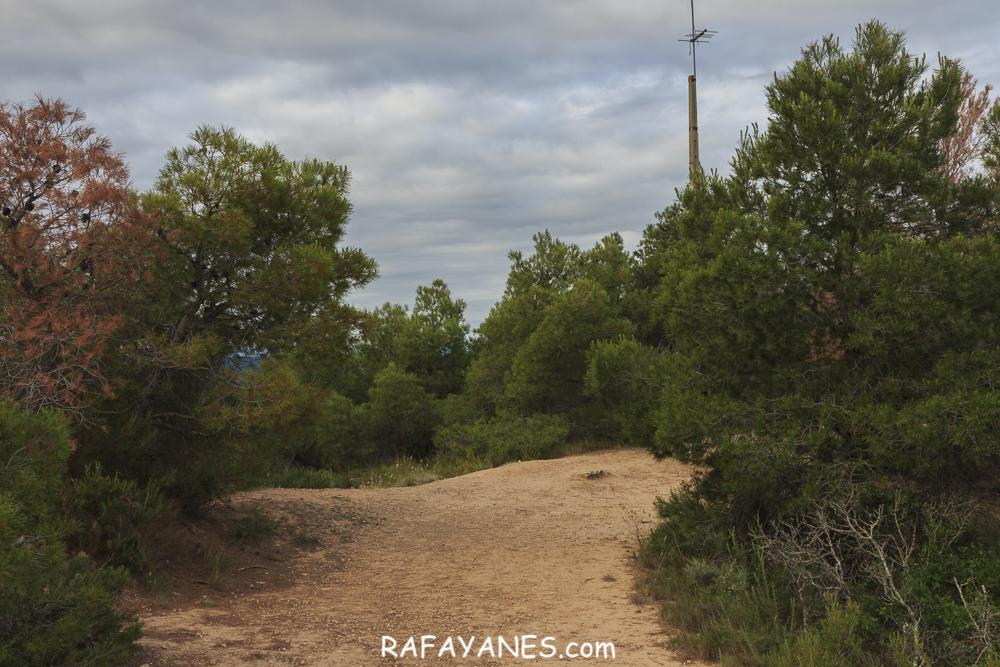 Ruta: Punta de Montmeneu (495 m.) (Els 100 Cims)