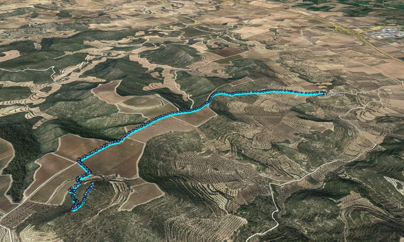Ruta: Els Bessons (593 m.) (Els 100 Cims)